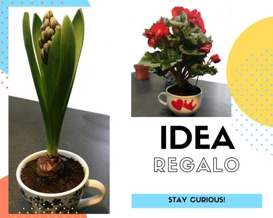 https://verdelario.com/2018/02/08/idea-regalo-per-il-tuo-s-valentino-2018/