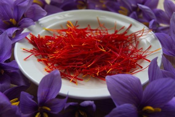 saffron-2835249_1920