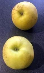 2 occorrente mele