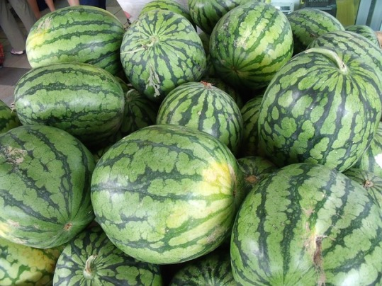 watermelons-705226_640